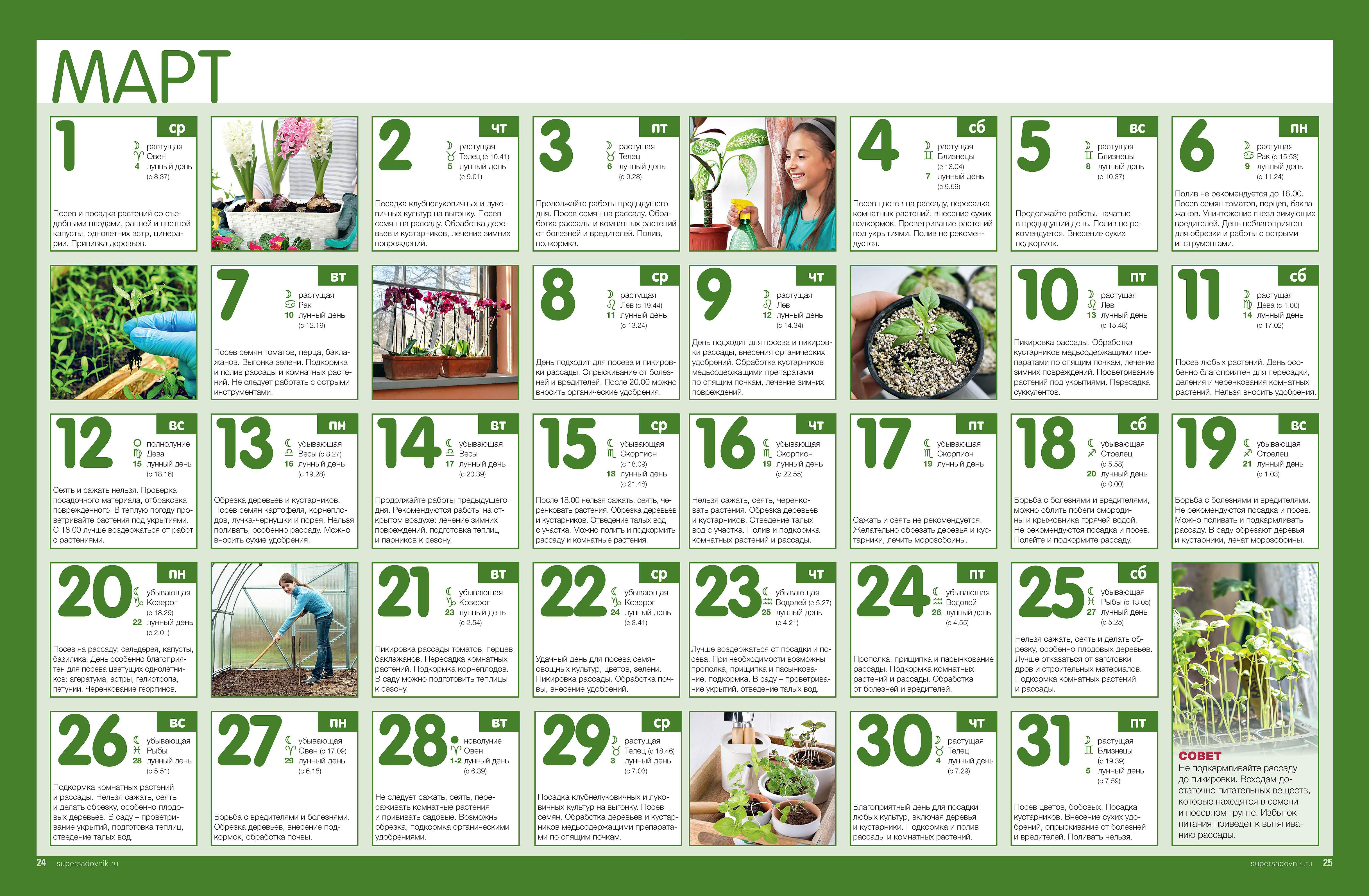 Точный Лунный посевной календарь садовода-огородника на май