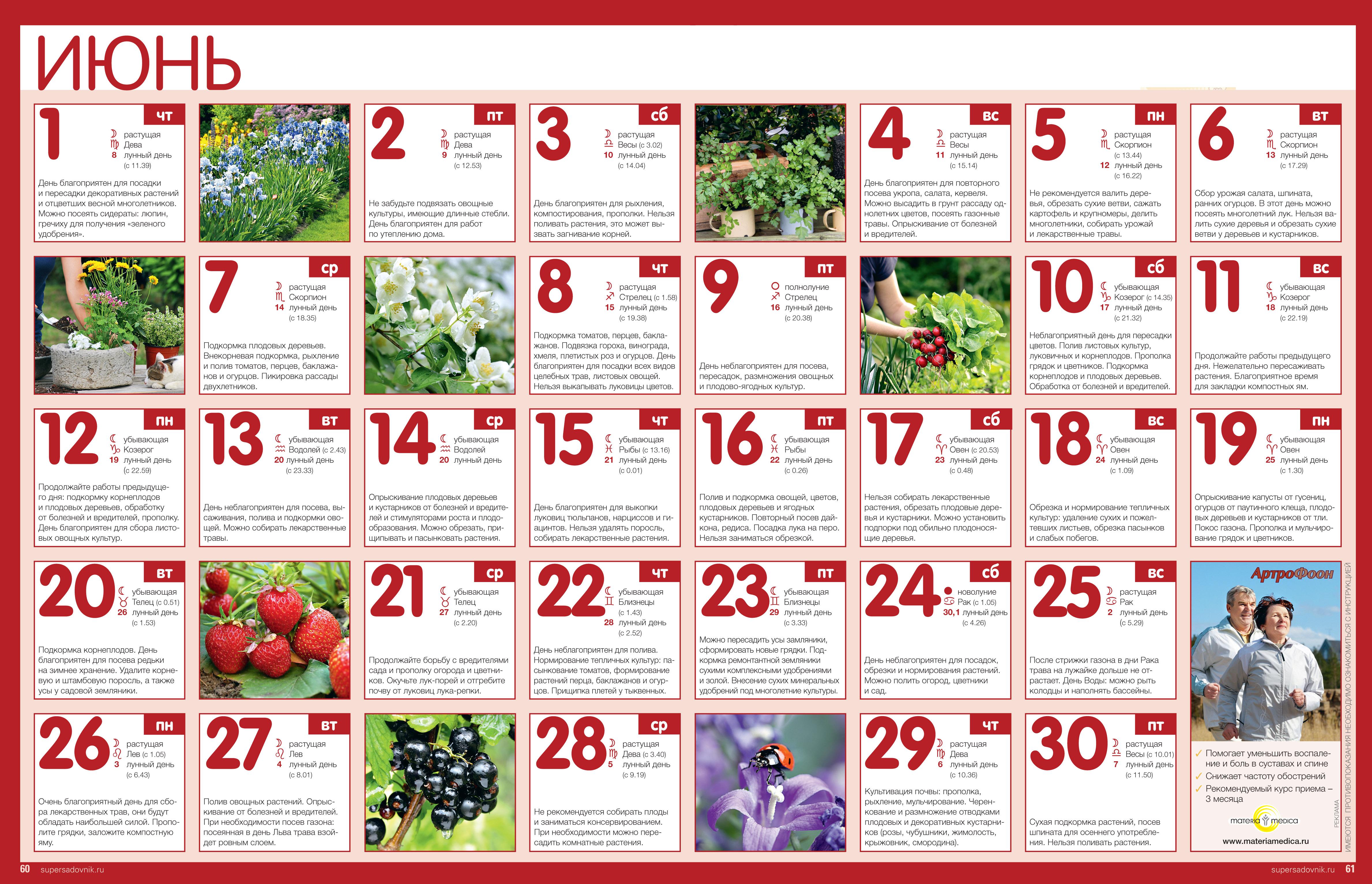 Улетный Лунный календарь на октябрь 2017 - стрижек, огородника, клева