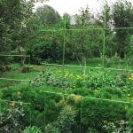 Крепление для садовых опор STC-11 (10 шт.)